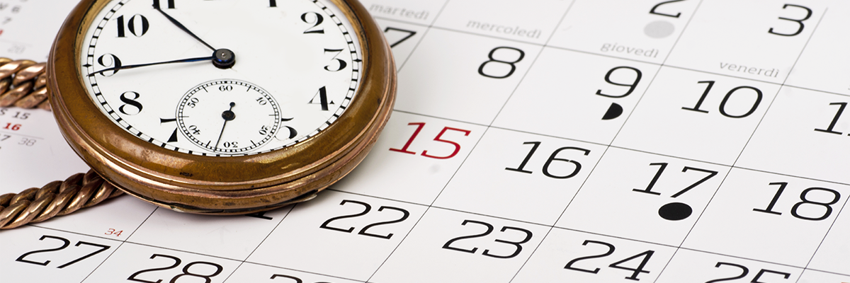 Do your research. When is the best time for a new website launch?